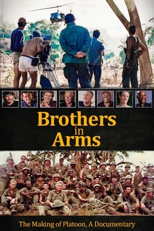 Image Brothers in Arms