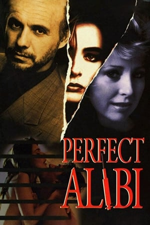Image Perfect Alibi