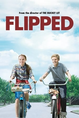Poster Flipped 2010