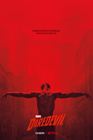 Image Marvel's Daredevil