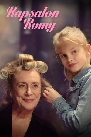 Romy's Salon