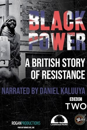 Image Black Power: A British Story of Resistance
