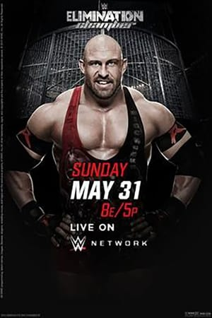 Image WWE Elimination Chamber 2015