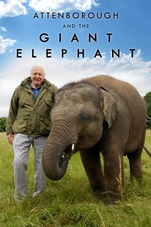 Image Attenborough and the Giant Elephant