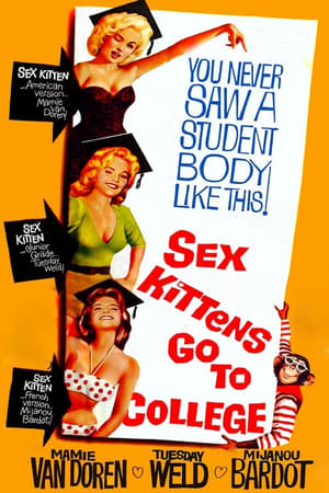 Image Sex Kittens Go to College