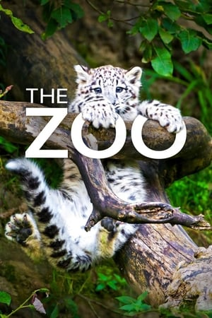 Image The Zoo