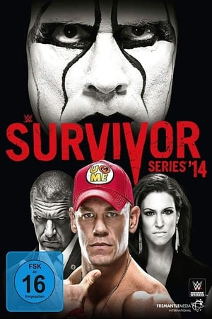 Image WWE Survivor Series 2014