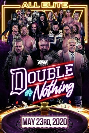 Image AEW Double or Nothing 2020