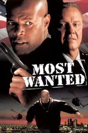 Image Most Wanted