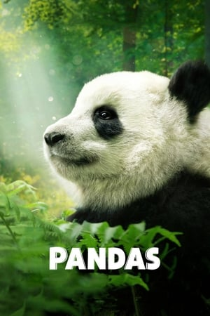 Ver Online Pandas