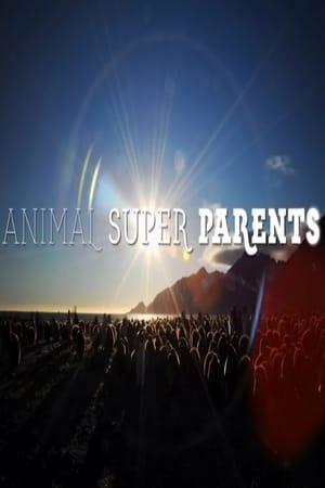Image Animal Super Parents