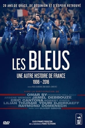 Image The Blues: Another Story of France
