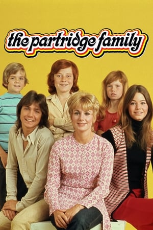 Image The Partridge Family