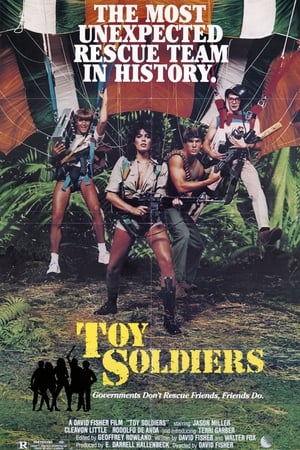 Image Toy Soldiers