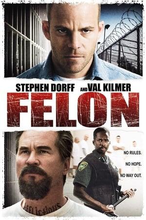 Image Felon