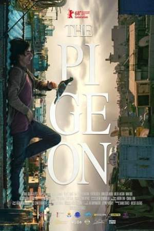 Image The Pigeon