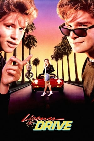 Image License to Drive