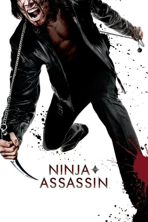 Image Ninja Assassin