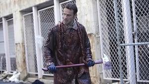 Watch The Walking Dead 1x2 Online