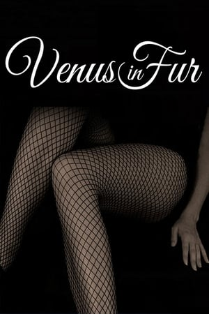 Poster Venus in Fur 2013