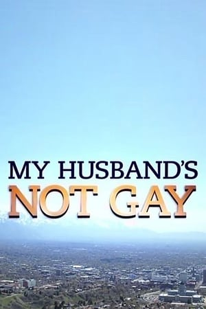 Image My Husband's Not Gay