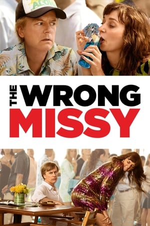 Poster The Wrong Missy 2020