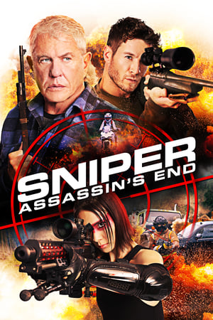 Image Sniper: Assassin's End