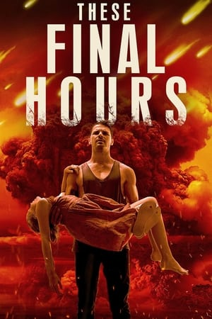 Image These Final Hours
