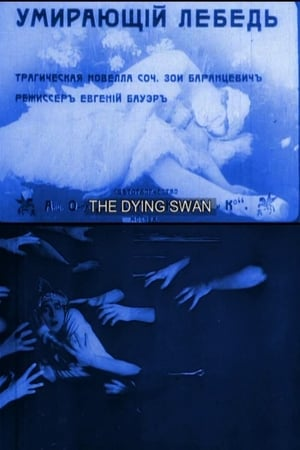 Image The Dying Swan