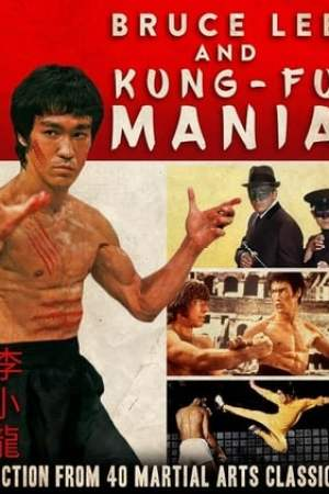 Image Bruce Lee and Kung Fu Mania