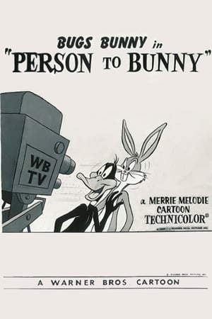 Image Person to Bunny