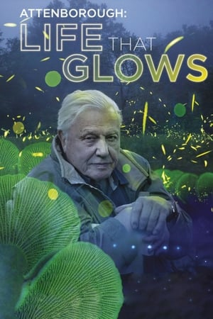 Image Attenborough's Life That Glows