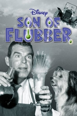 Image Son of Flubber