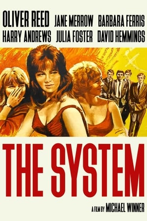 Image The System