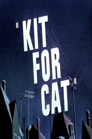 Image Kit for Cat