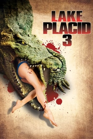 Image Lake Placid 3