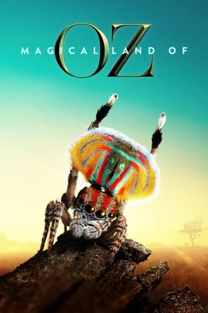 Image Magical Land of Oz
