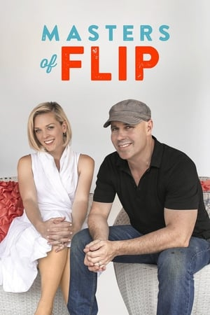 Image Masters of Flip