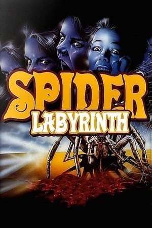 Image The Spider Labyrinth