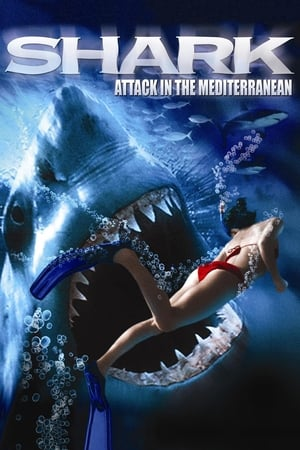 Image Shark Attack in the Mediterranean