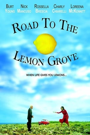Image Road to the Lemon Grove