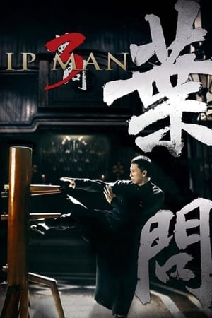 Image Ip Man 3