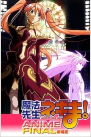 Image Magister Negi Magi: Anime Final