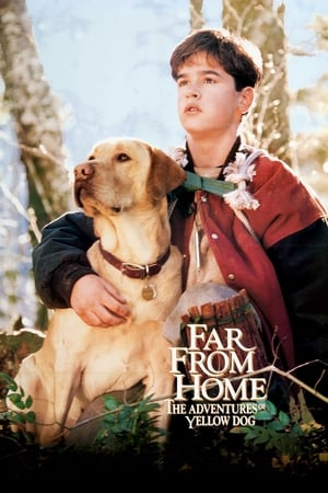 Image Far from Home: The Adventures of Yellow Dog