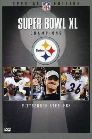 Image Super Bowl XL Champions Pittsburgh Steelers