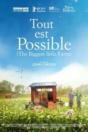 Image Tout est possible (The Biggest Little Farm)