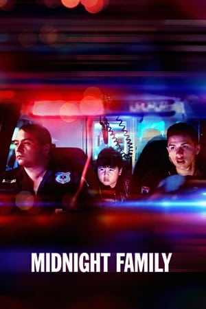 Poster Midnight Family 2019