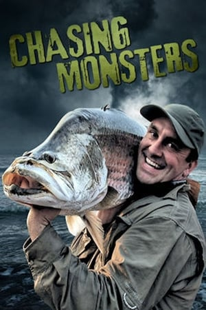 Image Wild Catch / Chasing Monsters