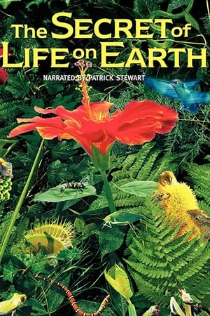 Image The Secret of Life on Earth