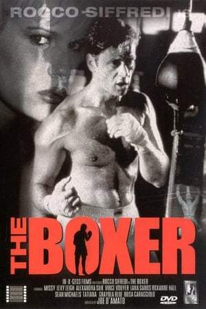 Image The Boxer